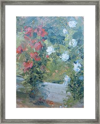 Rose Garden Framed Print by Bryan Alexander