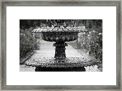 Rose Garden Fountain Framed Print by Tracy Lamb