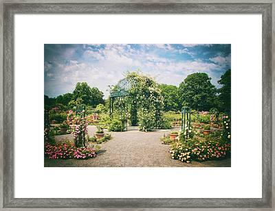 Rose Garden Pergola Framed Print by Jessica Jenney