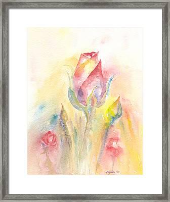 Rose Garden Two Framed Print