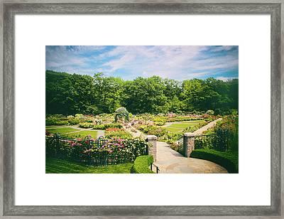 Rose Garden Views Framed Print by Jessica Jenney