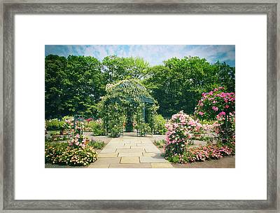 Rose Garden Walkway Framed Print by Jessica Jenney