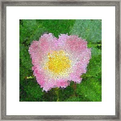 Rose Glass Mosaic Framed Print by Miroslav Nemecek