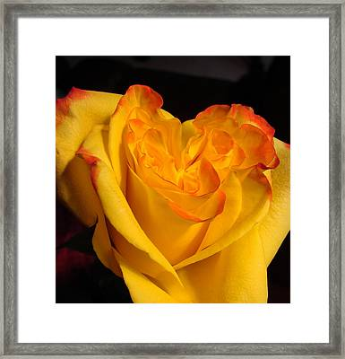Framed Print featuring the photograph Rose Heart by Margaret Bobb
