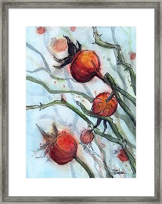 Rose Hips Abstract  Framed Print by Olga Shvartsur
