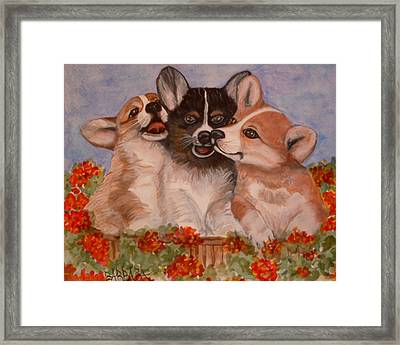 Rose Hyacinth And Daisy Framed Print by Barbara Oberholtzer
