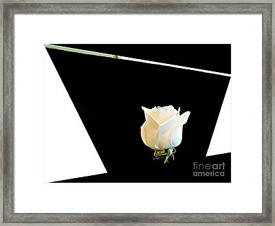 Rose In The Middle Framed Print by Marsha Heiken