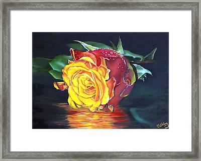 Rose Laura Framed Print