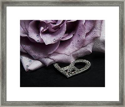 Rose Love And Peace One Framed Print by Karen Musick