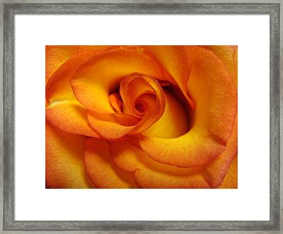 Rose Marie Framed Print