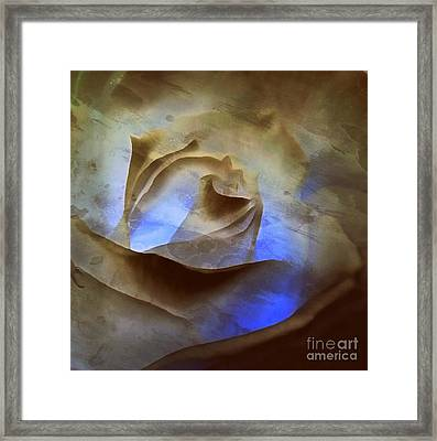 Framed Print featuring the photograph Rose - Night Visions  by Janine Riley
