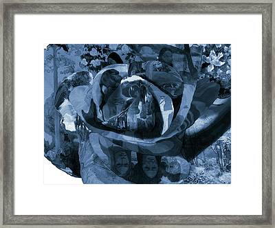 Rose No 1 Framed Print