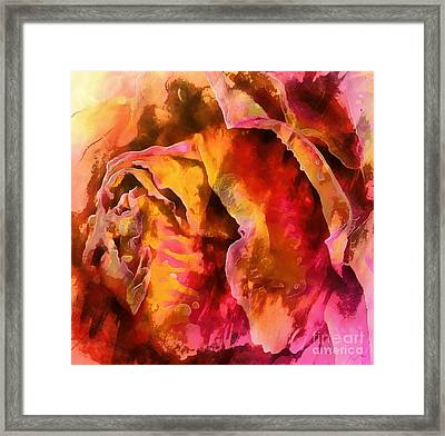 Rose Of Passion Framed Print by Krissy Katsimbras