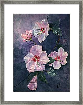 Rose Of Sharon Framed Print by Katherine Miller