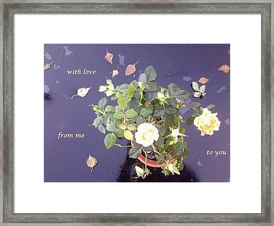 Rose On Glass Table With Loving Wishes Framed Print
