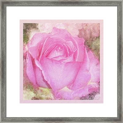 A Rose Pastel Soft Sorbet 2 Framed Print by Mona Stut
