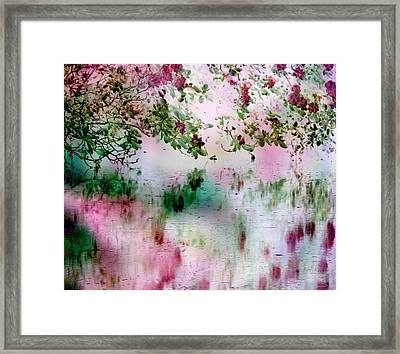 Rose Reflections Framed Print