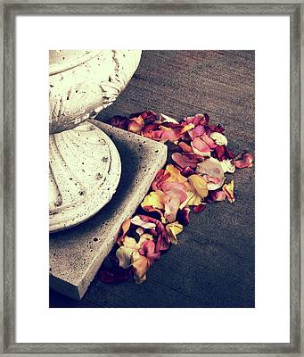 Rose Remnants  Framed Print