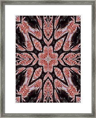Rose  Framed Print by Ricky Kendall