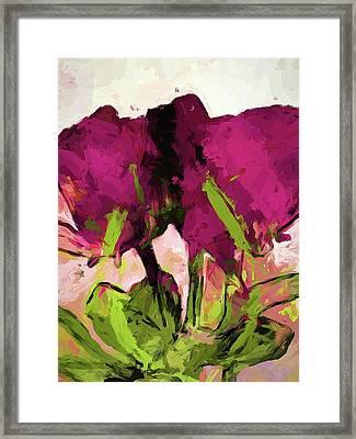 Rose Romantica Magenta Green Framed Print