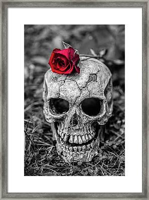 Rose Skull Framed Print