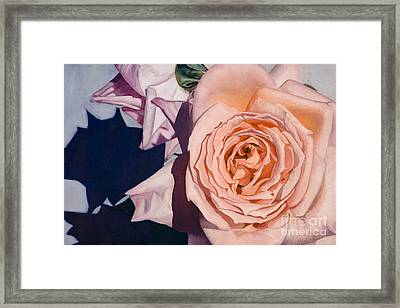 Framed Print featuring the painting Rose Splendour by Kerryn Madsen-Pietsch