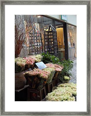 Rose Stand Framed Print by Catherine Alfidi