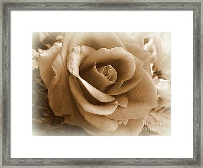 Rose Vignette Framed Print