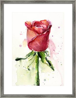 Rose Watercolor Framed Print by Olga Shvartsur