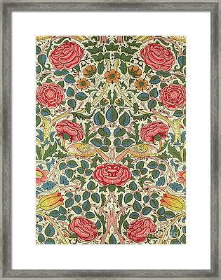 Rose Framed Print by William Morris