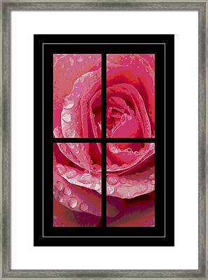 Rose Window Framed Print