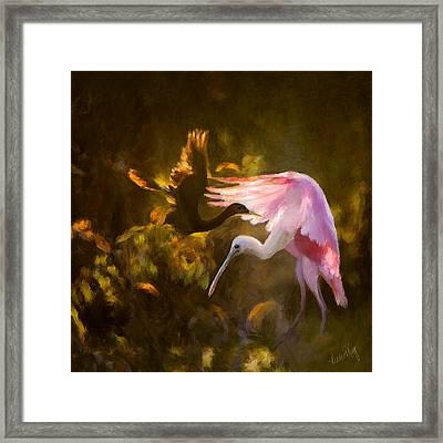 Roseate Spoonbill 0559 Framed Print