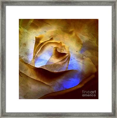 Framed Print featuring the photograph Rosebud - Till We Meet Again by Janine Riley