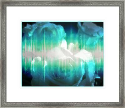 Roses #10 Framed Print