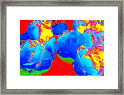 Roses #6 Framed Print