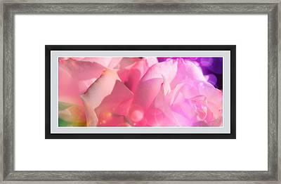 Roses #9 Framed Print