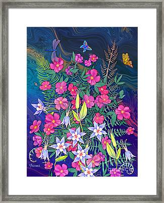 Roses And Columbine Framed Print by Teresa Ascone