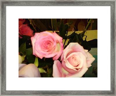 Roses Framed Print by Anne Zimmerman