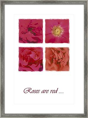 Roses Are Red .... Framed Print