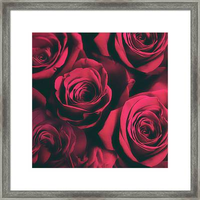 Roses Are Red Framed Print by Jessica Jenney