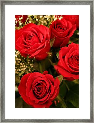 Roses Are Red Framed Print by Kristin Elmquist
