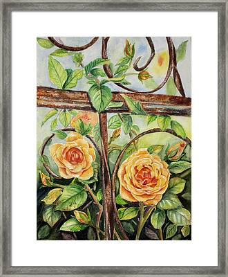 Roses At Garden Fence Framed Print by Patricia Pushaw
