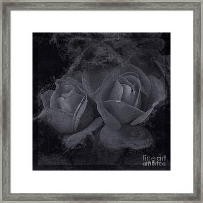 Roses Black White 4 Framed Print by Mona Stut