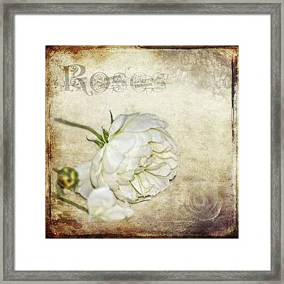 Roses Framed Print by Carolyn Marshall