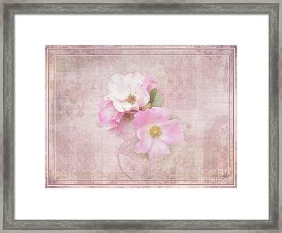Roses Eternal Framed Print