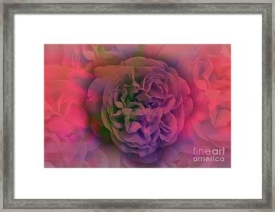 Roses In My Dreams, Red Framed Print
