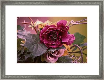 Roses In Oils Framed Print