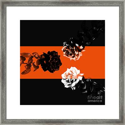 Roses Interact With Orange Framed Print