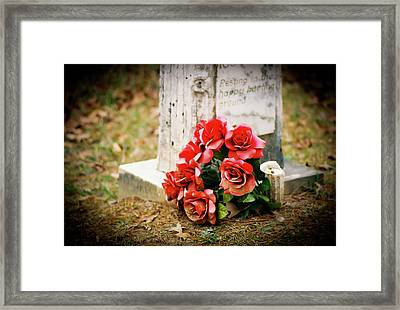 Roses On A Grave Framed Print by Jonathan  Daniels