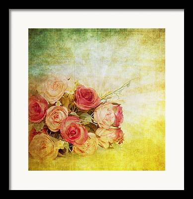 Abstract Rose Abstract Framed Prints